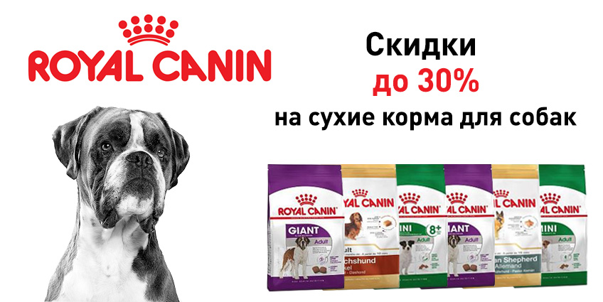 Скидки до 30% на Royal Canin для собак